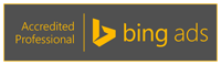 Bing Ads Consultant